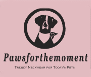 Pawsforthemoment